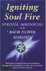 IGNITING SOUL FIRE